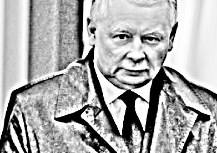 Waldemar Żyszkiewicz: Świat, Niemcy i Szewczyk Kaczyński